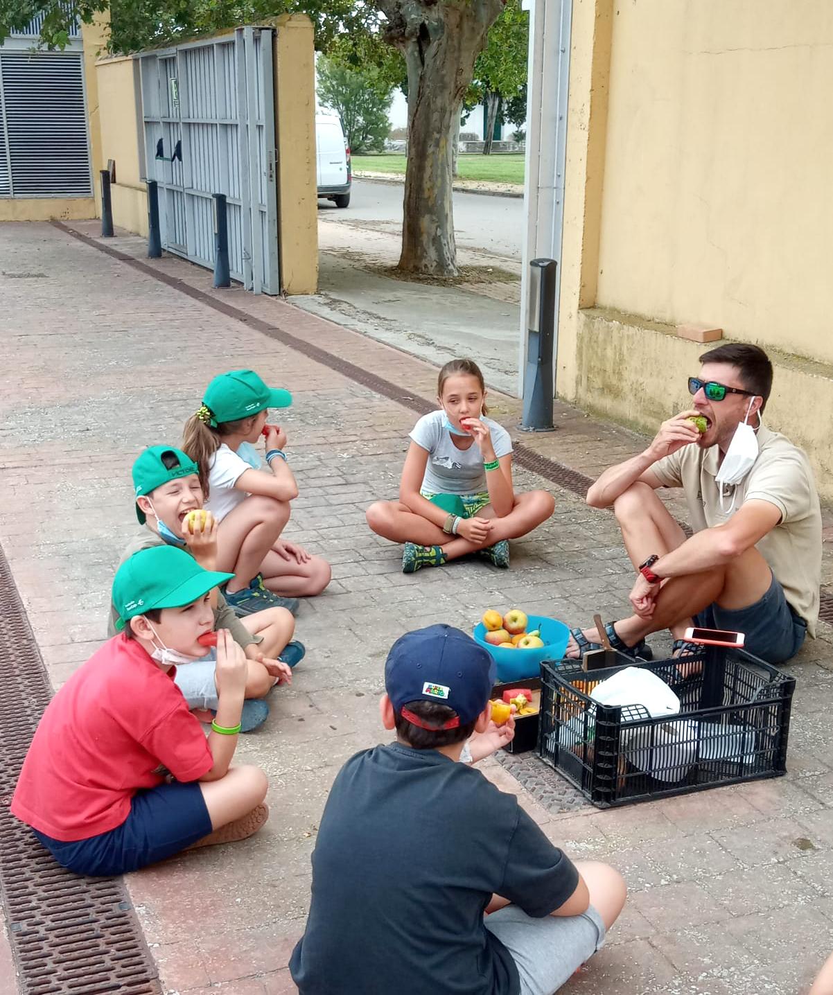 Mercazaragoza dona fruta de temporada al campus infantil de verano de La Alfranca.